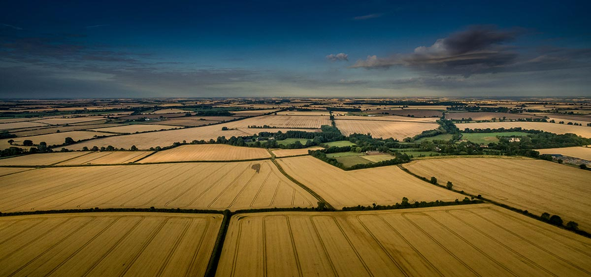 Aerial photography of farmland