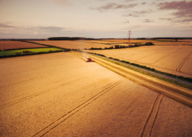 Drone photography of summer harvesting in Huntingdonshire and Cambridgeshire