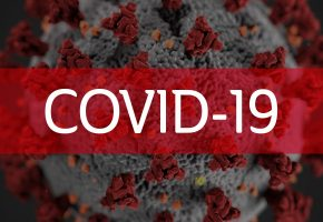 Covid-19, an update regarding Catalyst Video Services.